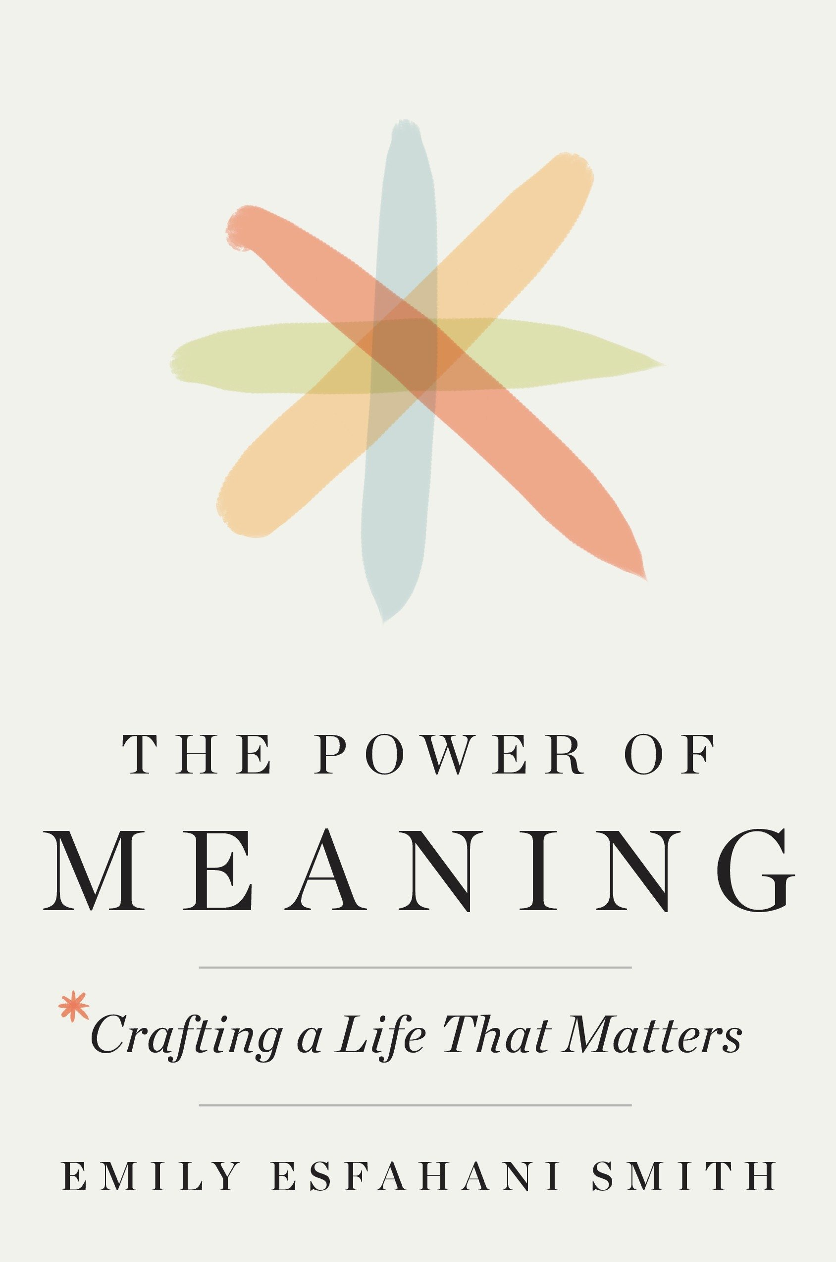 The Power of Meaning: Crafting a Life That Matters: Esfahani Smith ...