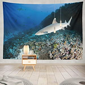 """ASOCO Marine-Life Tapestry, Tapestry Wall Hanging Reef Shark White Tip Hawaii Life Grey French Animal Wall Tapestry for Bedroom Living Room Tablecloth Dorm 80"""" WX60 L"""