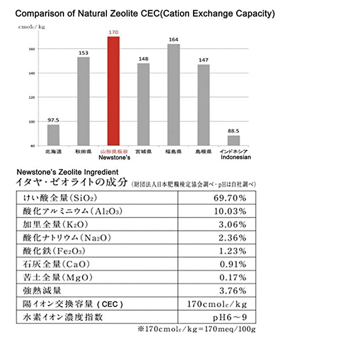 Zeolite (clinoptilolite) Roca de ceolita 100% natural de Newstone, 5 ...