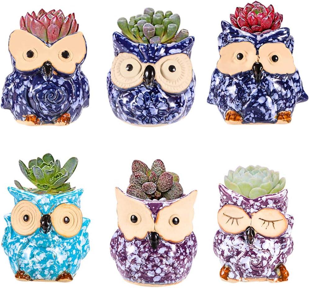 YLINGSU 2.5 Inch Owl Pot Ceramic Flowing Glaze Base Serial Set Succulent Plant Pot Cactus Plant Pot Flower Pot Container Planter Bonsai Pots with A Hole Perfect Gife Idea excluding Plants Green
