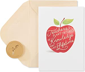 Papyrus Blank Cards with Envelopes, Apple for Teacher (14-Count)
