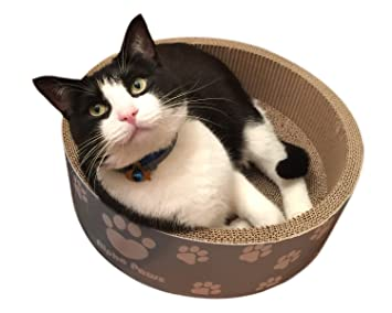 Amazon Com Alphapaws Cat Scratcher Bed With Catnip Round