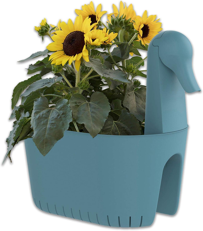 BLUEBIRD PLANTER on Yellow Basket Plants Windowsill Free Shipping