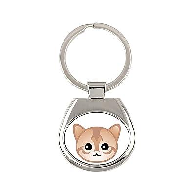 Singapura, un Llavero con un Gato, una Nueva colección con ...