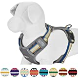 Blueberry Pet 3M Reflective Multi-Colored Stripe Dog Harness, Step in or Vest Harness, Matching Collar & Leash Available Separately