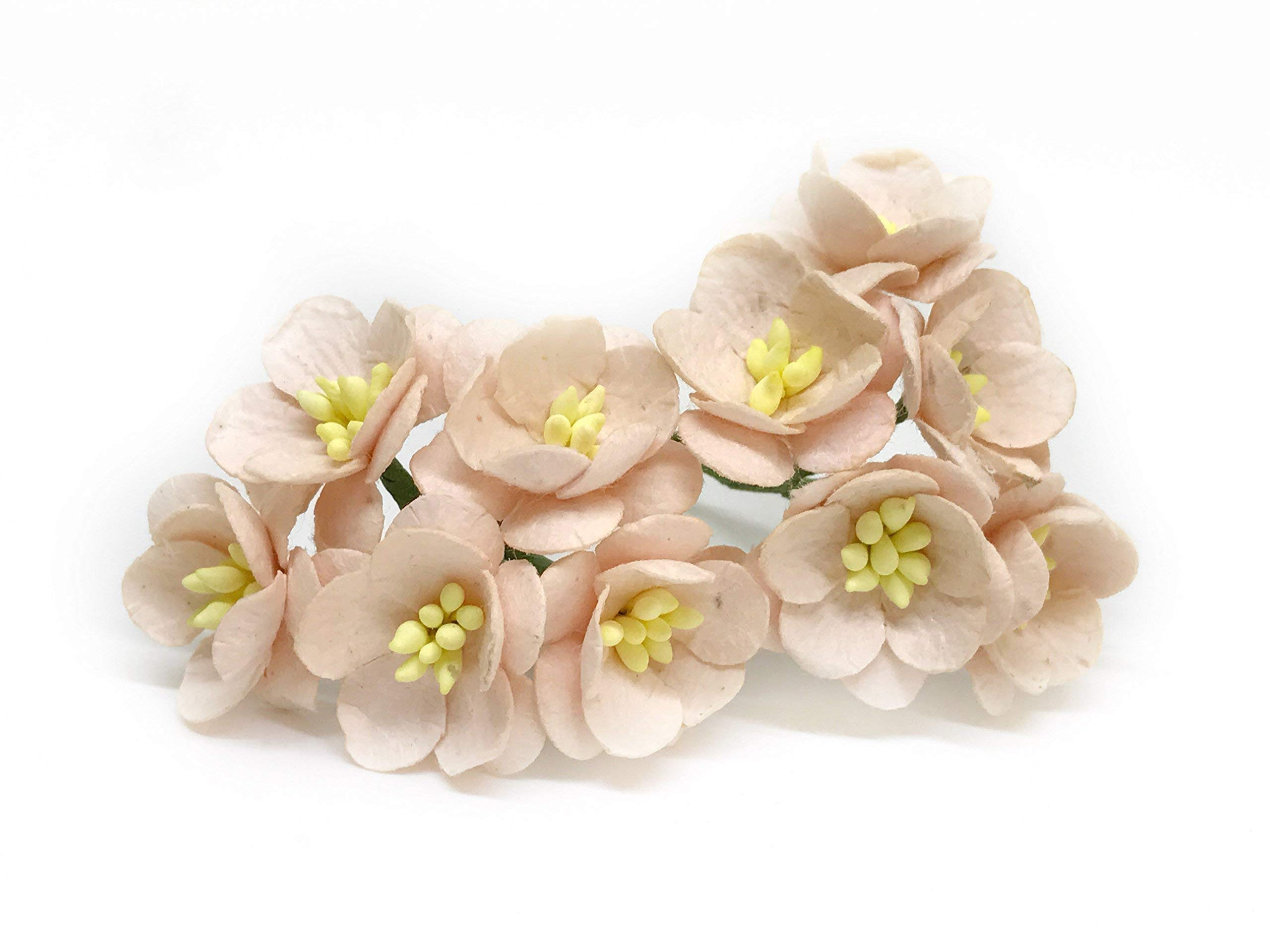 1-Blush-Pink-Cherry-Blossom-Flower-Artificial-Flowers-Paper-Flowers-Synthetic-Flowers-Fake-Flowers-Paper-Craft-Flowers-Mulberry-Paper-Flowers-Wedding-25-Pieces