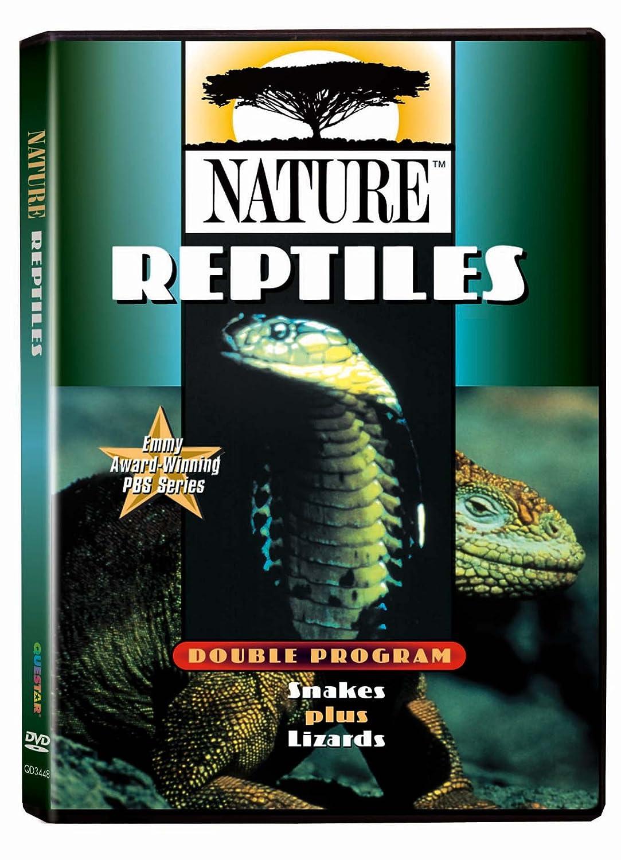 Nature - Reptiles