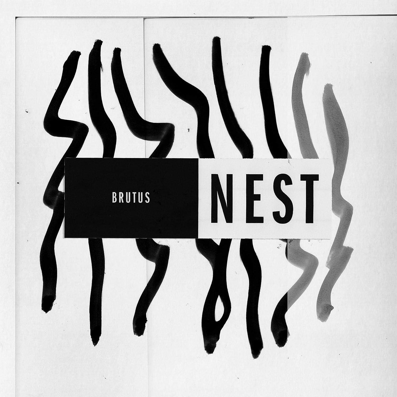 Nest (LP Coloré) [Vinilo] explicit_lyrics