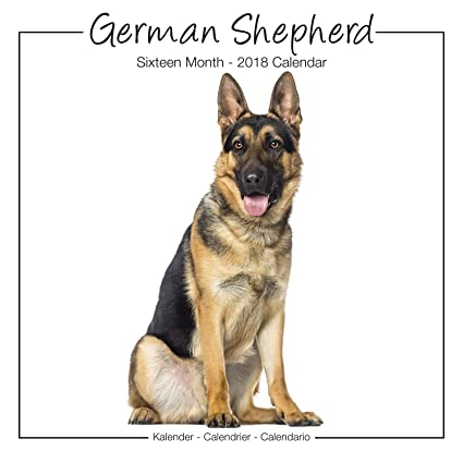german shepherd calendar calendar german shepherd dog breed calendars 2018 dog calendar