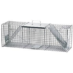 Best Animal Traps