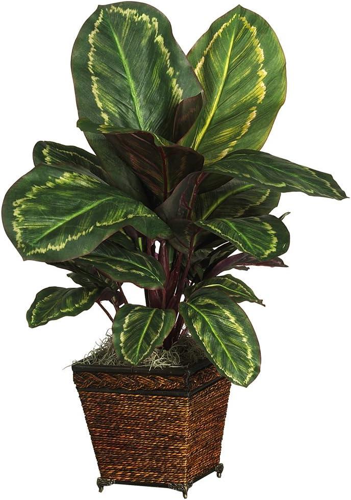 Nearly Natural 6590-05 Maranta with Basket Decorative Silk Plant, Green