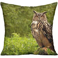 Owl Birds Grass Herbs Predator Best Decorative Pillow Covers 18in X 18in (Pillow Inner Is Included)