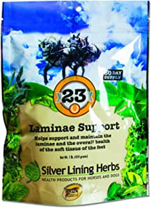 Laminae Support | Supports Natural Temperature in Horse Feet and Legs | Supports Soft Tissues and Reduced Inflammation of the Horses Foot and Hoof | Made in the USA of Natural Herbs by Silver Lining Herbs
