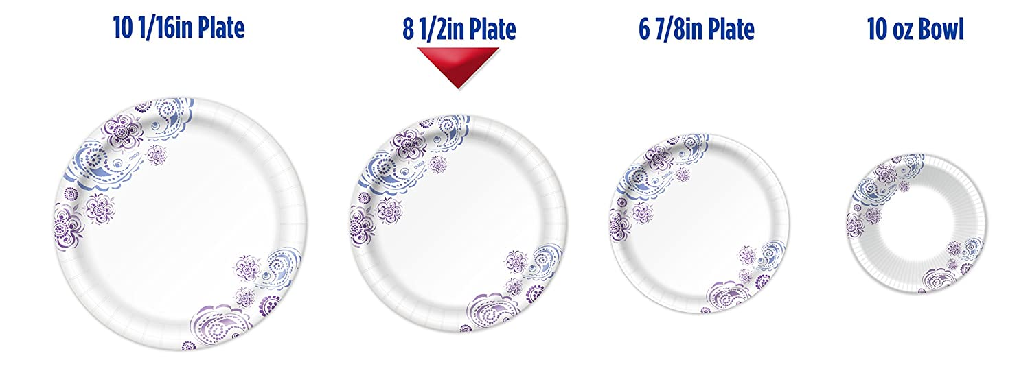 Amazon.com Dixie Everyday Paper Plates 8 1/2 Inch Plates 480 Count (10 Packs of 48 Plates); Designs May Vary Health \u0026 Personal Care  sc 1 st  Amazon.com & Amazon.com: Dixie Everyday Paper Plates 8 1/2 Inch Plates 480 ...