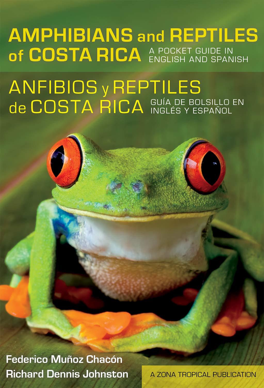 Muyoz Chacyn, F: Amphibians and Reptiles of Costa Rica/Anfib: A Pocket Guide in English and Spanish/Guía de Bolsillo En Inglés Y Español Zona Tropical Publications: Amazon.es: Munoz Chacon, Federico, Johnston, Richard Dennis: