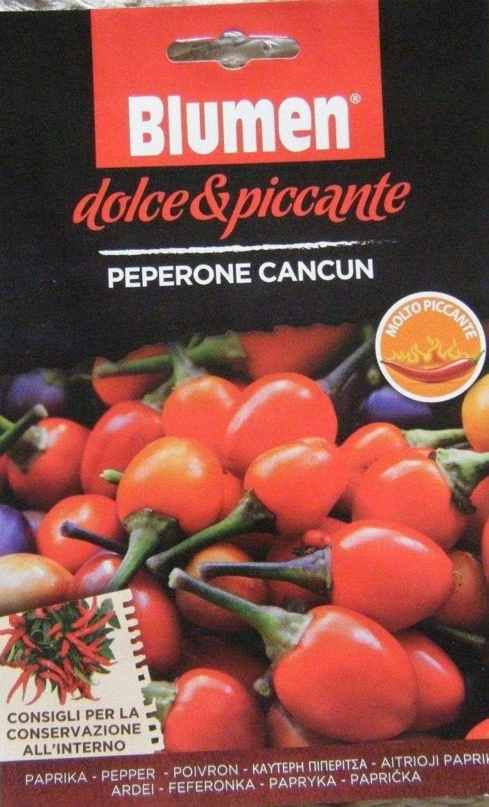 ScoutSeed BLUMEN AUTHENTIC ITALIANO SEMILLAS PEPERONE CANCUN PEPPER SEED PVP £ 3.99