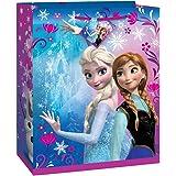 Disney Frozen Gift Bag