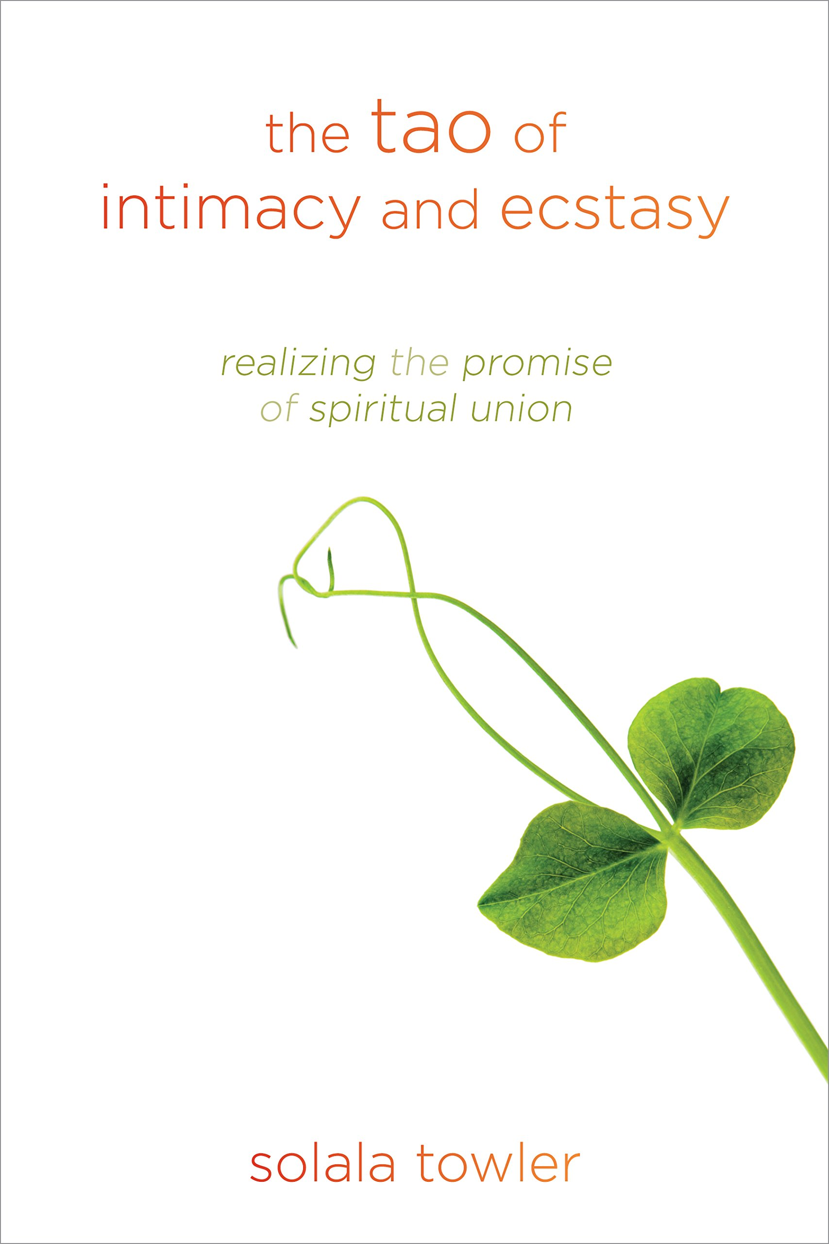 the tao of intimacy and ecstasy realizing the promise of