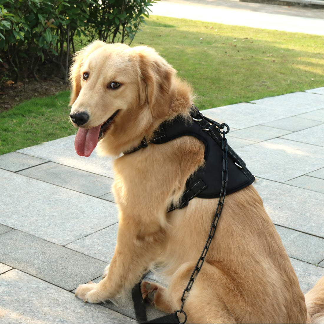 Black Large Black Large SHUNAI No Pull Dog Harness Pet Vest, Walking Dog Harness with Handle, Adjustable & Breathable Design, Great fit for Husky, golden Retriever,Labrador,Belgian Malinois,Border Collie, Size L