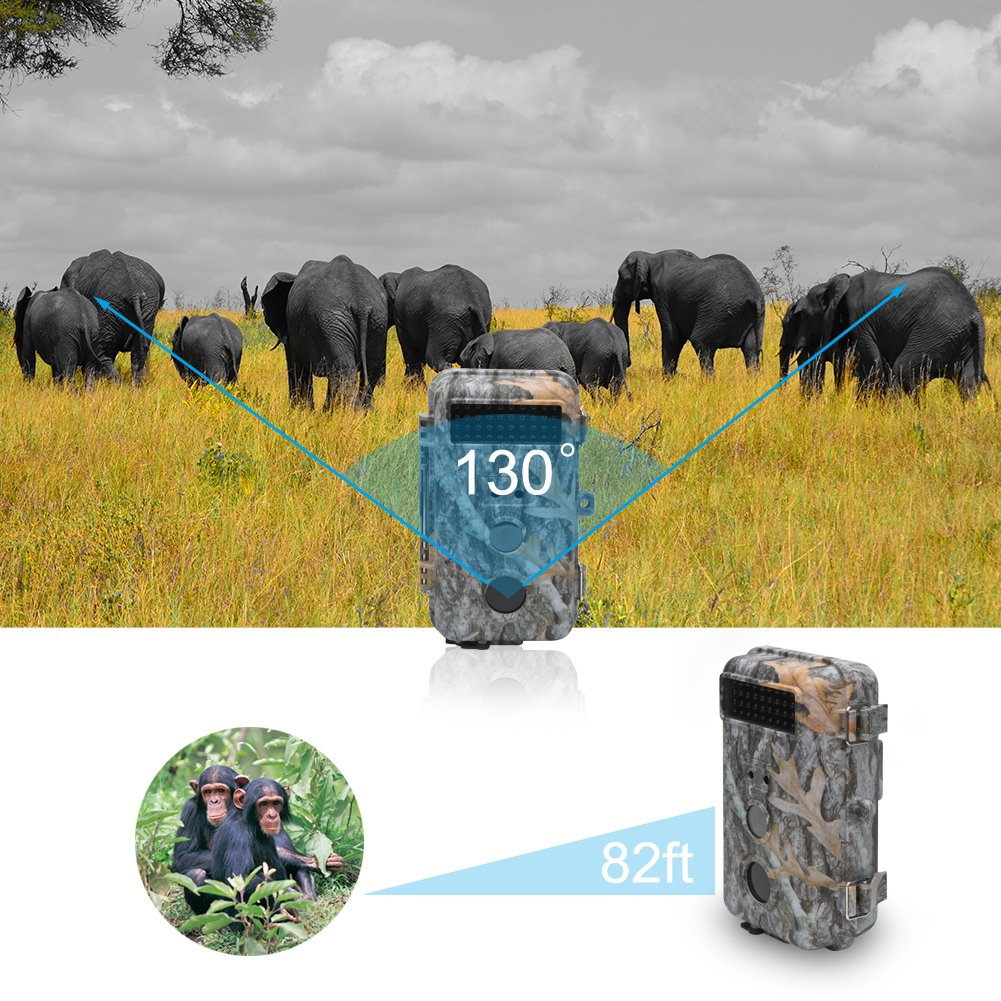 DigitNow! 16MP 1080 HD Waterproof Trail &Surveillance Digital Camera with Infrared Night Version up to 65ft in 2.4''LCD Screen &40pcs IR LEDs Wildlife Hunting &Scouting Camera by DIGITNOW (Image #7)