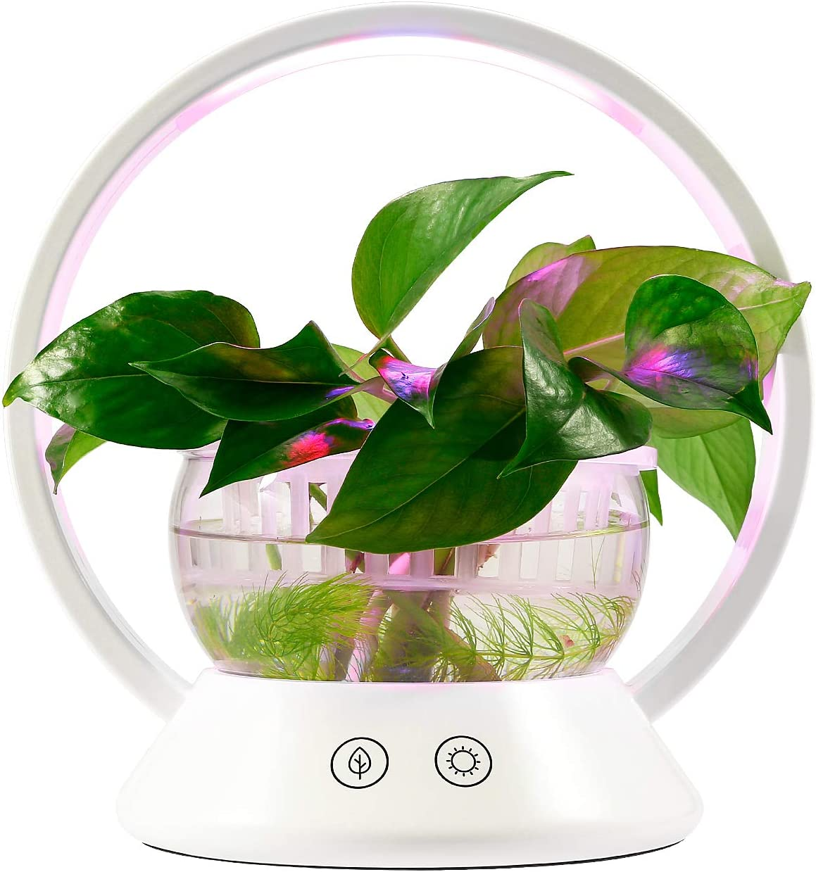 TORCHSTAR LED Indoor Garden Kit Plant Grow Light, Fish Tank Design & Portable 'O' Shape Basket, Sensitive Touch Control, for Bedroom, Kitchen, Office
