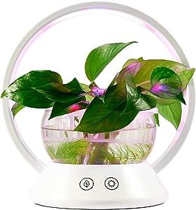 TORCHSTAR LED Indoor Garden Kit Plant Grow Light, Fish Tank Design & Portable 'O' Shape Basket, Sensitive Touch Control, for Bedroom, Kitchen, Office