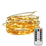 Amazon Price History for:String lights 33ft 100 LEDs, Furnizone Dimmable With Remote Control Waterproof Warm White Battery Operated Outdoor Indoor Bedroom