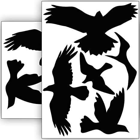 Vogelschutz Und Fensterschutz 10 Aufkleber Schutz Vor Vogelschlag Sticker Vögel