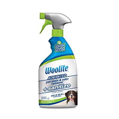 Woolite Advanced Pet Stain & Odor Remover + Sanitize