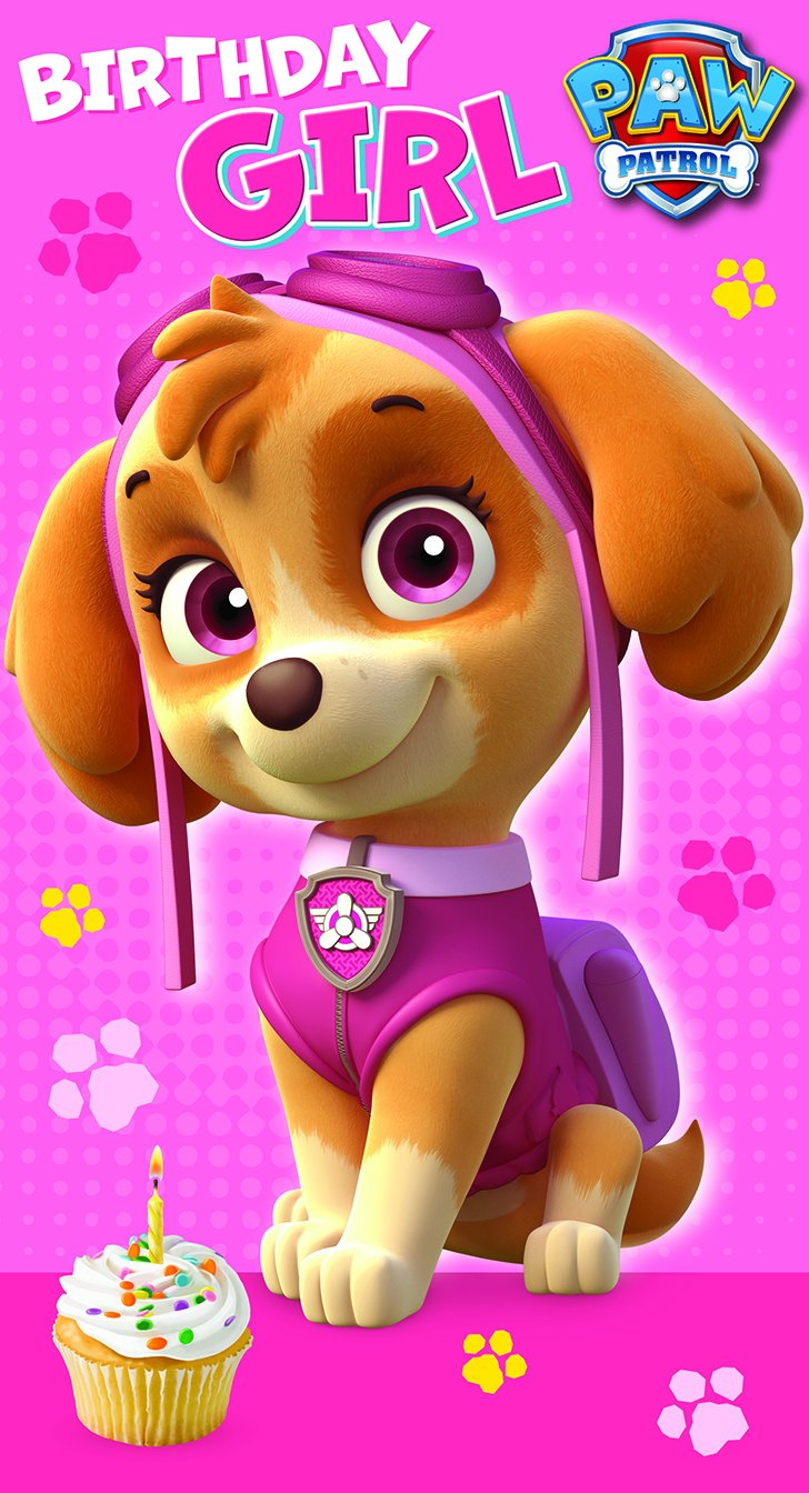 Paw Patrol Birthday Girl Birthday Card Amazon Co Uk Office Products