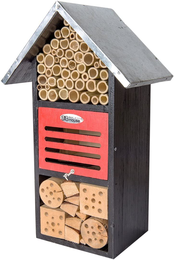 Super Moss 759834561316 Beneficial Bug House, Black Metal Roof