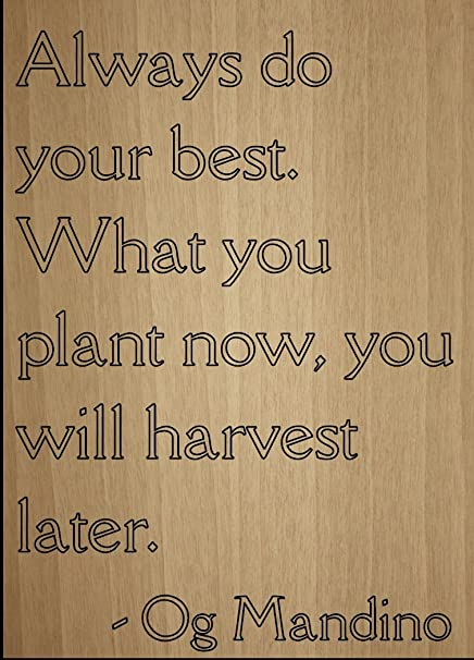 Amazoncom Always Do Your Best What You Plant Now Quote By