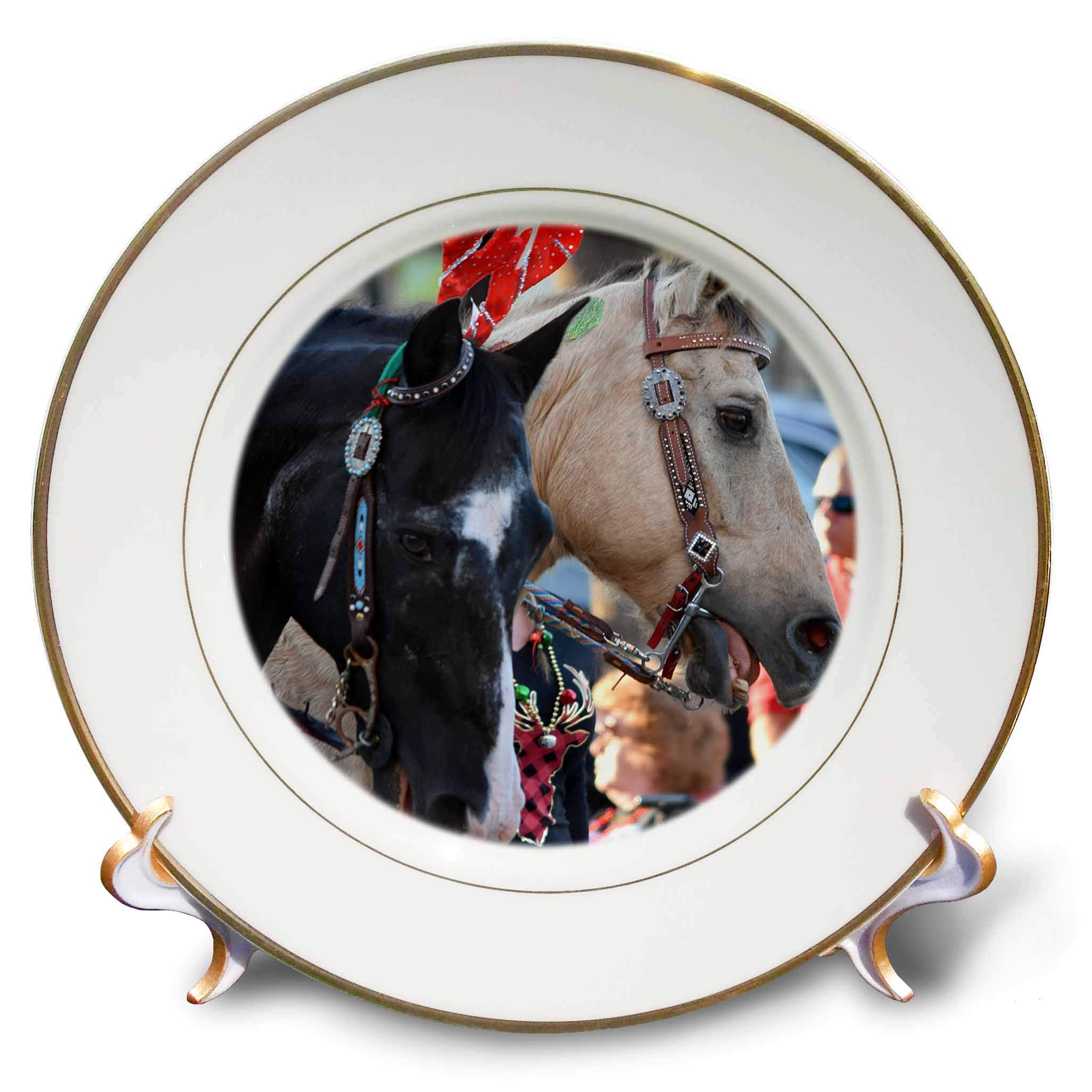 3dRose Susans Zoo Crew Animal - Two Horses All Dressed up - 8 inch Porcelain Plate (cp_294915_1)