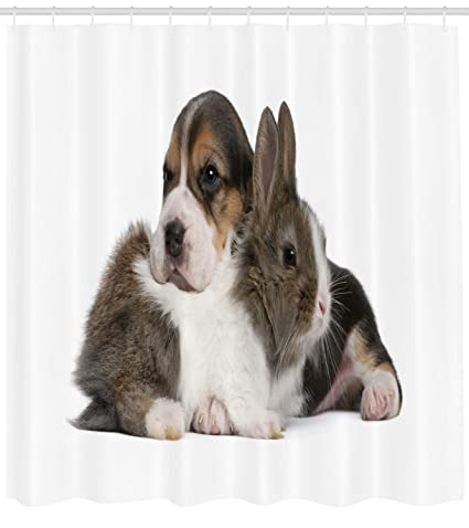 Ambesonne Beagle Shower Curtain Pets Rabbit And Puppy Animal Kingdom Friendship Best Companions Bunny Picture