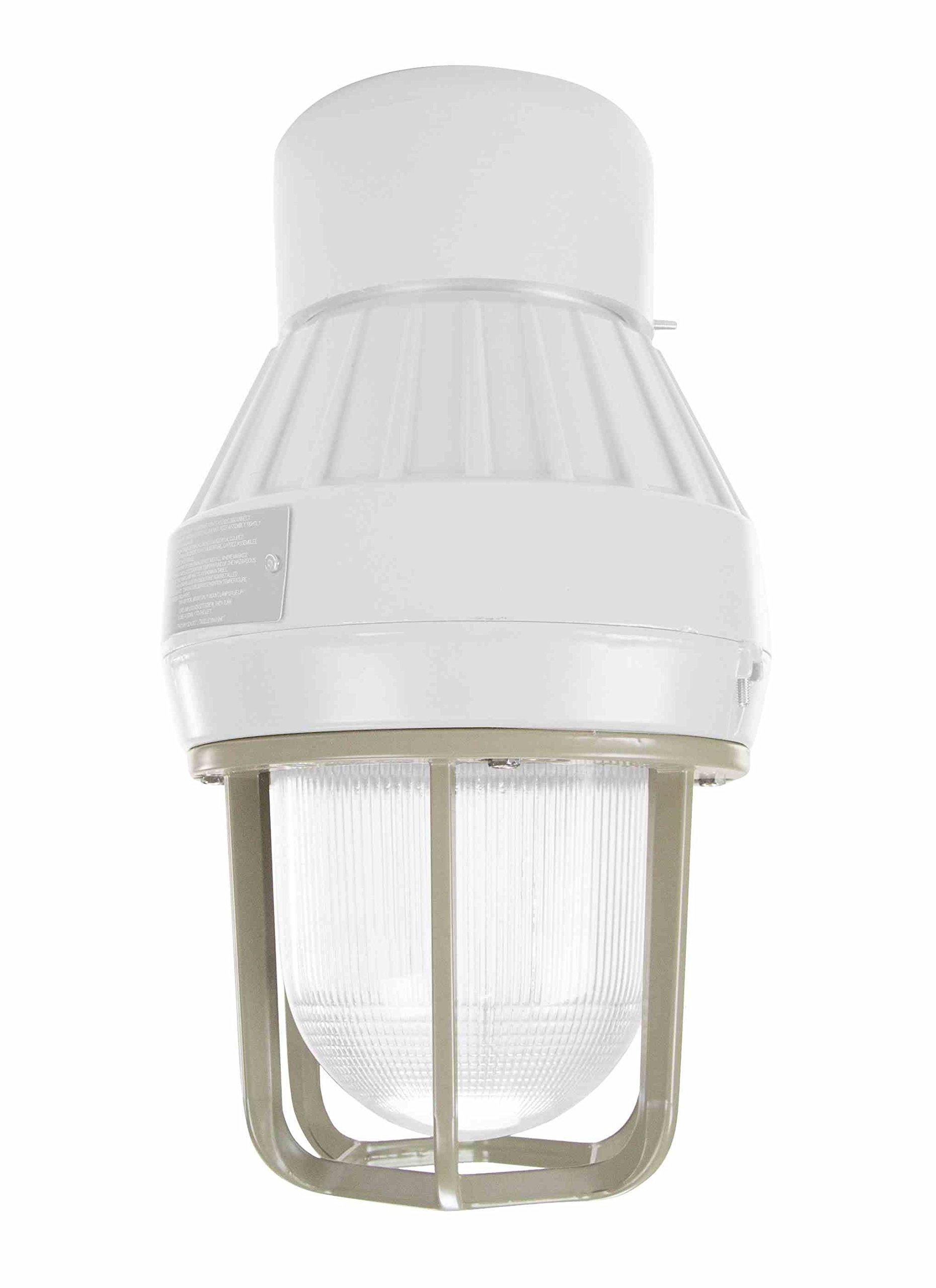 Larson Electronics 1218OXN3QM4 Pendant Mount Kit for Epsl-80-141 Series of LED Explosion Proof Strobe Lights