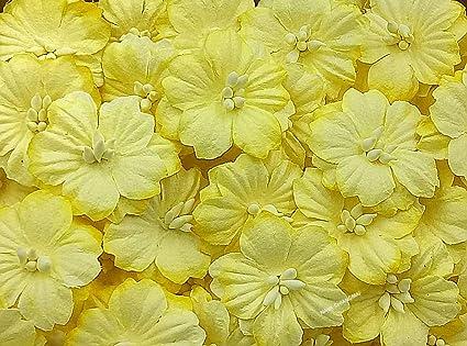 Nava Chiangmai Sakura Cherry Blossom Mulberry Paper Flower No Wire Stem Craft Flowers Artificial Flowers Scrapbooking Paper Flowers Decorative