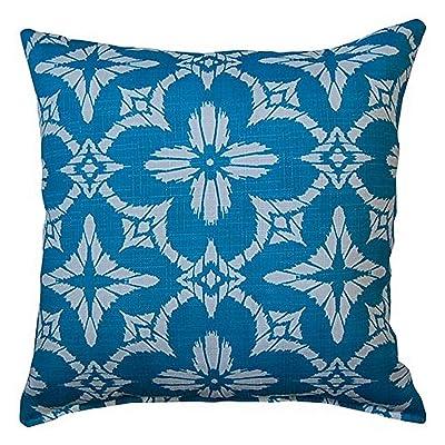 Creative Home Furnishings Aspidoras Teal Pillow Set : Garden & Outdoor