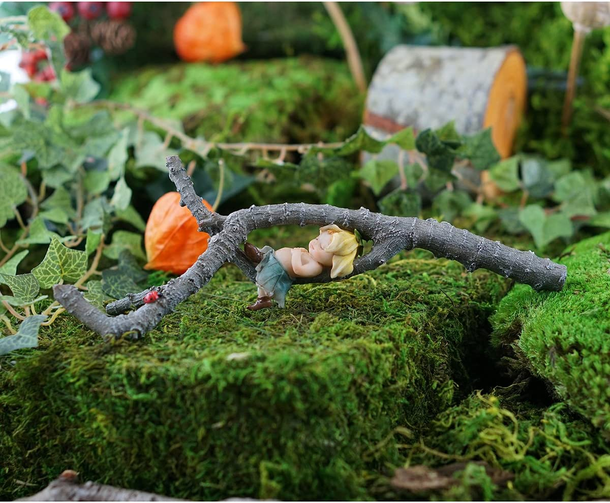 Fairy Garden Mini – Terrarium Mini – Mary s Discovery