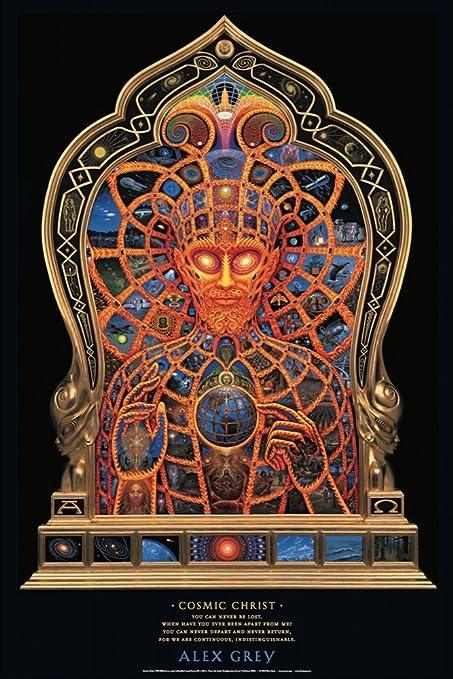 Amazon com: Alex Grey - Cosmic Christ - Poster: Posters & Prints