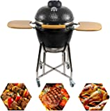 CHARAPID Barbecue Charcoal Grill 18 Inch, Egg Shaped Outdoor Ceramic Kamado Grill with Side Table for Camping and Picnic