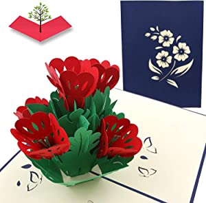 PopLife Lovely Flowers Pop Up Mother's Day Card - 3D Anniversary Gift, Pop Up Birthday Card, Thank You, Congratulations, Valentine's - for Mom, for Daughter, for Wife, for Grandma