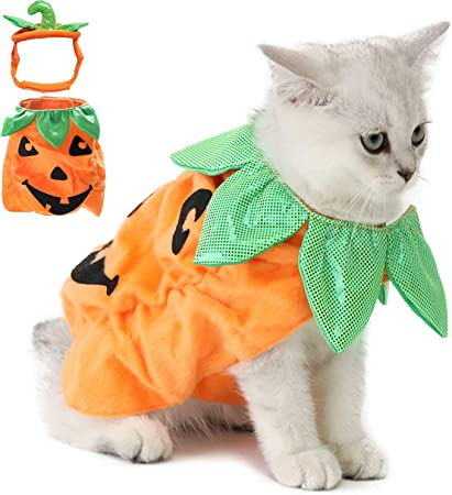 Legendog Cat Halloween Costume Cat Halloween Apparel Pumpkin Design Funny Pet Clothing Halloween Cat Outfit With Pumpkin Headwear For Cats And Puppy Amazon Co Uk Pet Supplies