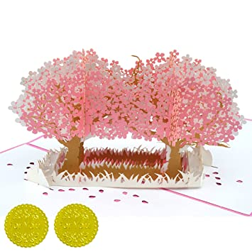 Amazon Cherry Blossom 3d Pop Up Greeting Card Gift Card For