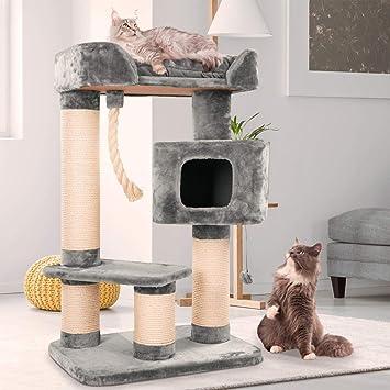 e785003ad517a2 Happypet massif Premium Arbre à chat Maine Coon Compact Condo I, pour gros  chats (