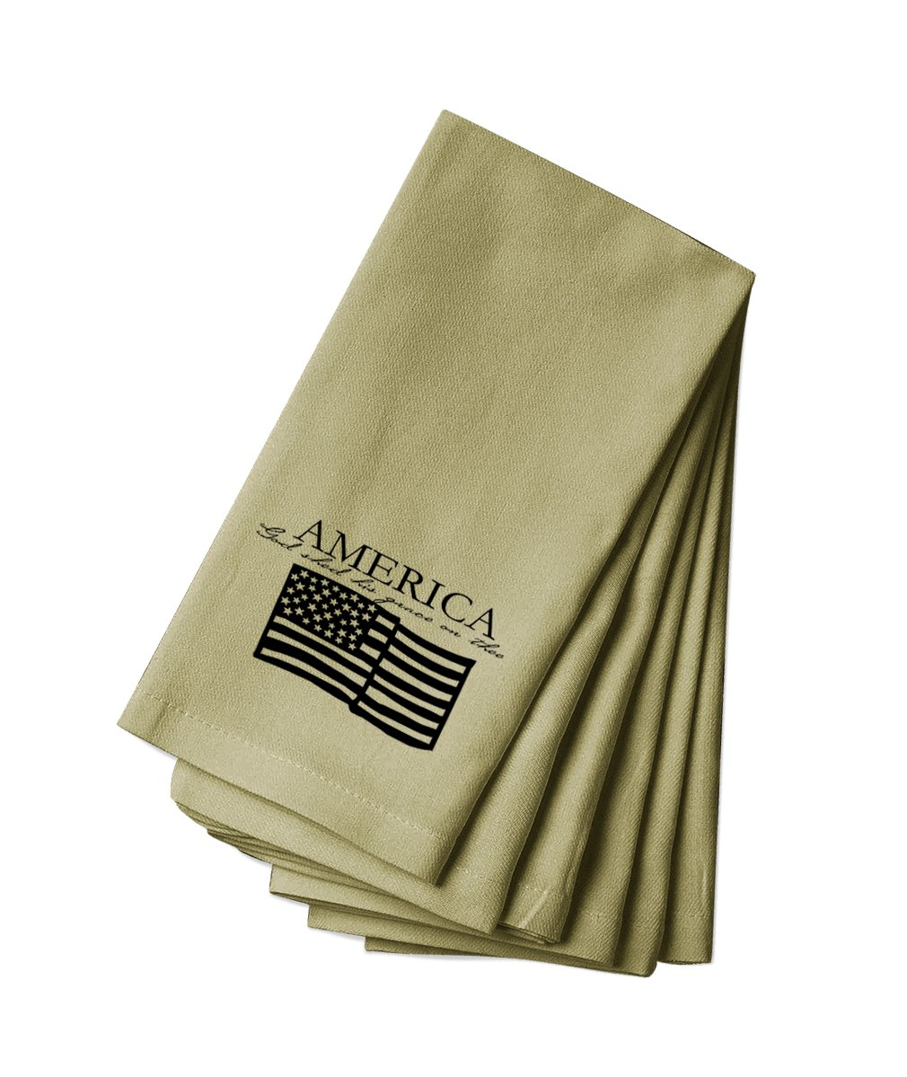 Style in Print Canvas Napkin Set Of 4 America God Shed His Grace On The Flag By