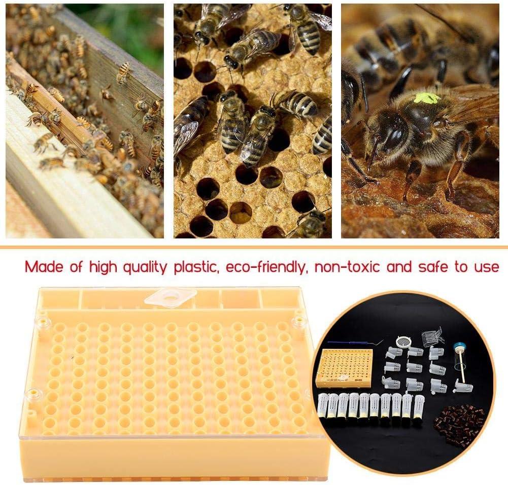 30 Stk 78 Mm Bienen Königin Käfig Schutz Königin Wangtaipu Bienen Käfig Bie D3T7