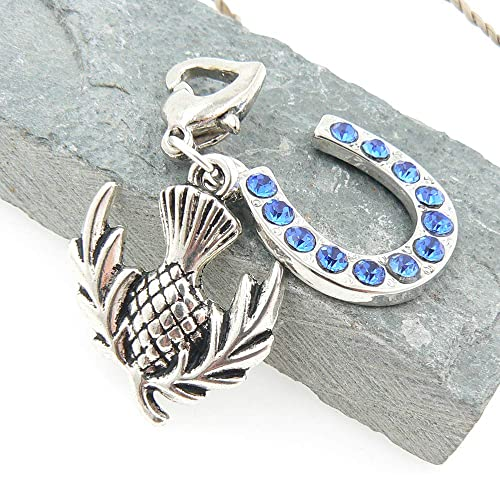 Silver Charm Scottish Thistle In Horse Shoe