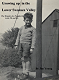 Growing up in the Lower Swansea Valley: Memoirs of a naughty boy in the 50s and 60s