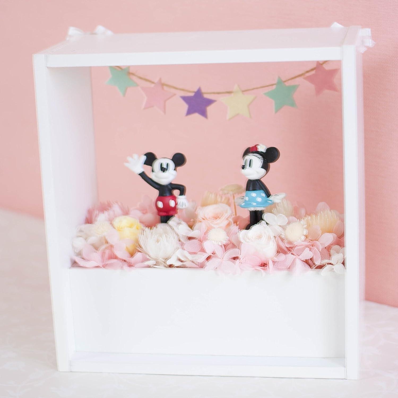 Ruplan プリザーブドフラワー 『disney flower garden ディズニーフラワーガーデン』 (ミッキー&ミニー, ピンク) B075DC2S2W  ピンク ミッキー&ミニー
