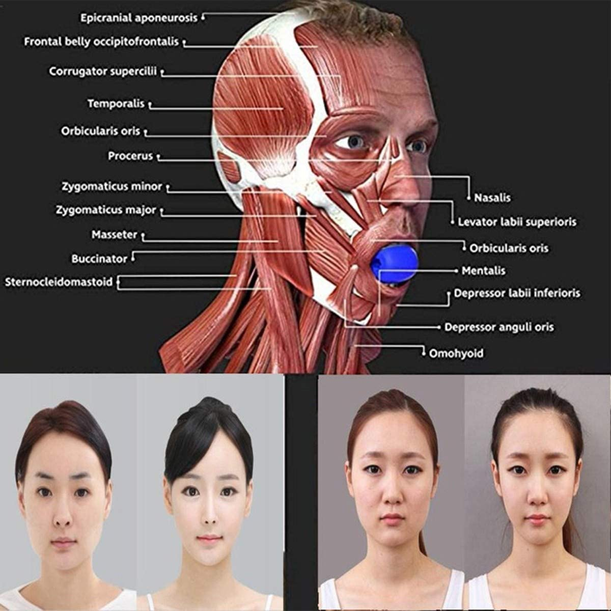 Details about  /Face Masseter Facial pop n go mouth Jawline Jaw Muscle Exerciser Chew Ball Set